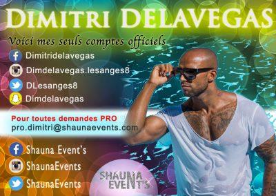 bannière web de Dimitri DELAVEGAS People SHAUNA EVENTS créé par Franck Cord'homme - été 2016 - Visible sur webtuto.fr